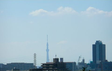20110918b.jpg