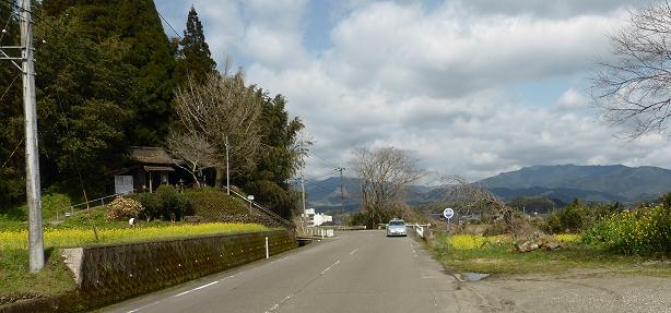 7tsuji614.jpg
