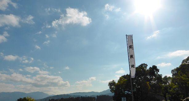 flagland614.jpg