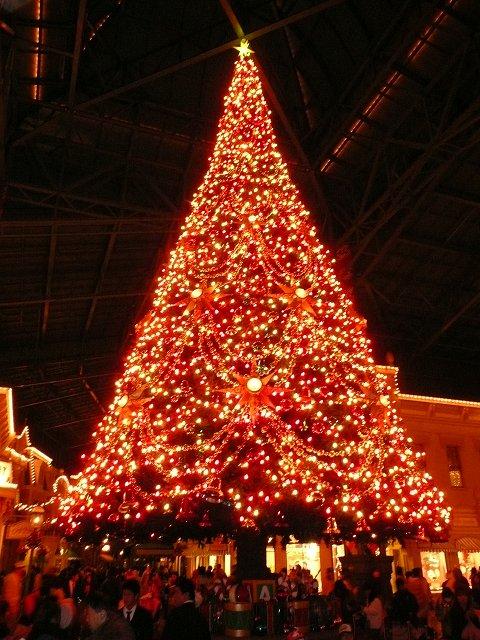 tree_p480.jpg